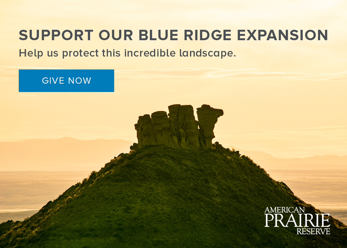 Support Blue Ridge