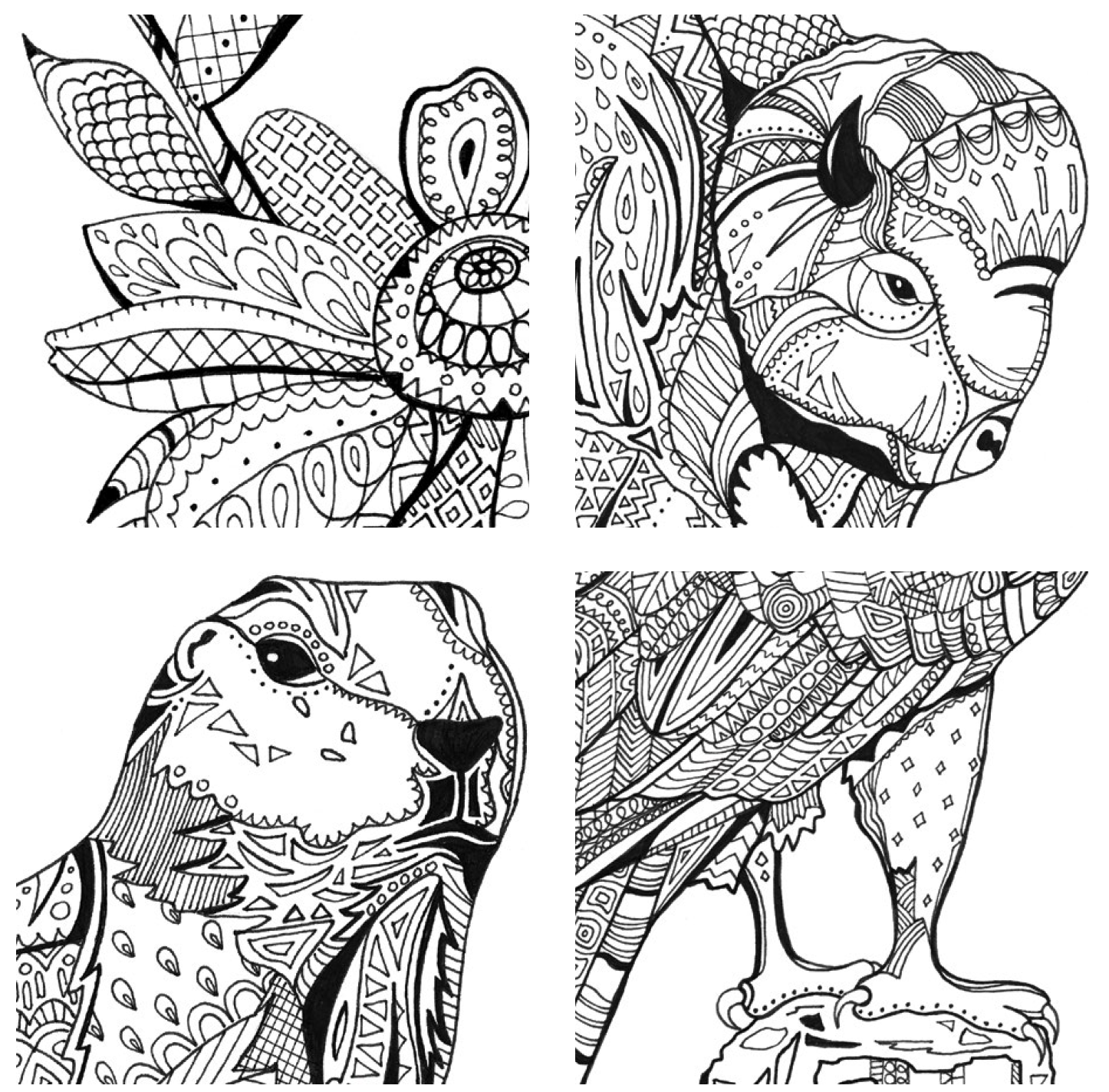 download free nature coloring book for adults - Nature Coloring Book